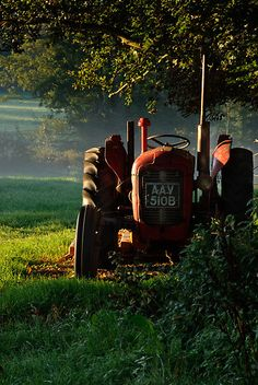 """""""Tractor in the morning light"""" by Christopher Cullen"""