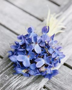 spring bouquet of violets on old wooden table Stock Photo Flowers Nature, Real Flowers, Colorful Flowers, Beautiful Flowers, Hidden Garden, Sweet Violets, Spring Pictures, Small Bouquet, Spring Bouquet