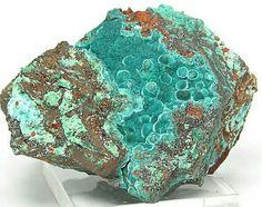 Blue Green Rare Rosasite Botryoidal Crystals on matrix