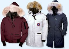 WOW! love love love. I think you will like it . http://gorgeouscoats.blogspot.com/  This website credit card accept. Share with you…ahah #canadagoose #JACKETS  $169