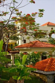 Villa vacation rental in Rincon, Puerto Rico from VRBO.com! Looks AMAZING!