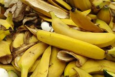 Bananas are mineral rich and recycling the peels back into your garden saves money and returns these nutrients to the soil where they can benefit other plants. Bananas are rich in minerals including: Potassium.This mineral helps promotegeneral plant vigour;build up resistance to pest and disease; is necessary to helpfruit develop; is involved inregulating around 50 …