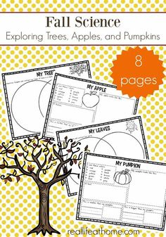 Free fall science worksheets packet focusing on trees, apples, and pumpkins. Fall is a great time to explore nature and this free learning packet for elementary-aged kids will help. #FallScience #FallWorksheets #ScienceWorksheets Science Worksheets, Worksheets For Kids, Science Lessons, Life Science, Kids Learning Activities, Science Activities, Science Ideas, Science Experiments, Kindergarten Worksheets