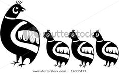 Native American quail family