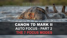 With seven different groupings or combinations of its 65 point autofocus system, the 7Dmk2 has a focus point option for almost every scenario. In this video ...
