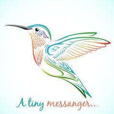 Cute and colorful hummingbird graphic