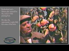 Rutherford's Paradise - Beth Sarim Film Footage
