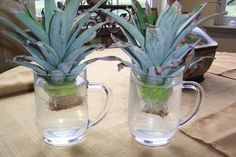 A pineapple can grow a pineapple from its crown. | 13 Vegetables That Magically Regrow Themselves