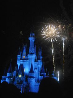 How to plan the perfect theme park Valentine's Day dinner