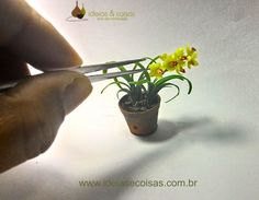 Miniature orchid Cymbidium- handmade modeling clay cold porcelain Scale 1:12