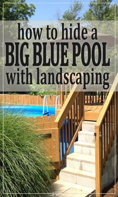 Hiding a Big Blue Above Ground Pool in a Landscaped Backyard - Hawk Hill ground pool landscaping plants Pool Landscaping Plants, Above Ground Pool Landscaping, Above Ground Swimming Pools, In Ground Pools, Landscaping Jobs, Backyard Pools, Desert Backyard, Sloped Backyard, Indoor Pools