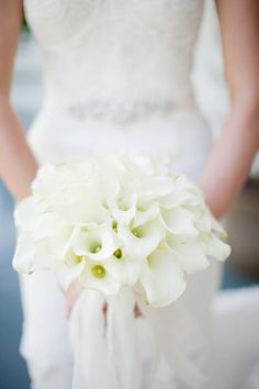 Event Planner:  Grace Leisure Events LLC  Floral Designer:  Jimenez Design Studio  Reception Venue:  Blackberry Farm  Cake Designer:  the art of cake  Band:  Bobby Yang and his Unrivaled Players  Makeup Artist:  Sonia Roselli Weddings