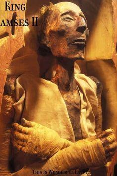 Ancient Egyptian Architecture, Ancient Egyptian Art, Egyptian Mummies, Egyptian Pharaohs, Ancient Egypt History, Ancient Aliens, Egypt Mummy, Egypt Museum, Mystique