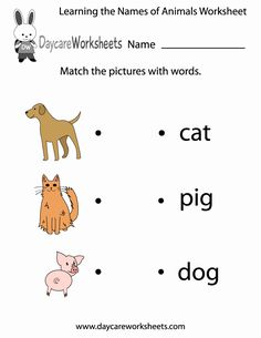 Land Animal Worksheet Pack | Animal worksheets, English worksheets for kids, Missing letter worksheets. May 14, 2019 - The Preschool and Kindergarten Animal ... Toddler Worksheets, Animal Worksheets, Reading Worksheets, Kindergarten Worksheets, Printable Worksheets, Spelling Worksheets, Letter Worksheets, Printable Coloring, Free Printable