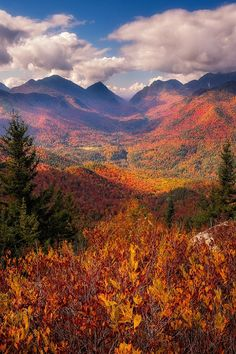 Adirondack State Park, New York. Adam Baker
