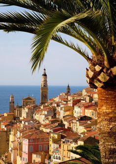 Menton, South of France.    Basilica of Saint-Michel-Archange
