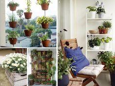 Plantas para decorar #balcones #pequeños