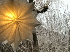 Weihnachtswerkstatt: Wolle, Garn, Faden, Papier, Karton, Schwemmholz, Draht