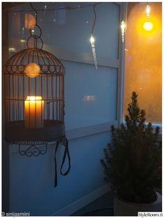 jouluvalot, valosarja, kuusi, lintuhäkki, kynttilä