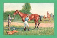 Vintage Art Postcard Jockey Saddles Horse Before Race Blanket Bucket ...