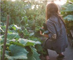 """Мой гавайский учитель говорила: """"Когда женщина работает в саду, она творит мир"""". Мы отдаем свою энергию и она возвращается к нам обновленной."""