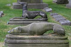 rosehill cemetery chicago | Rosehill Cemetery [Two Dogs]