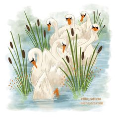 by Alison Mutton ~ 7 Swans a Swimming