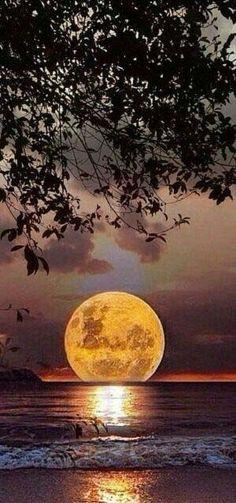 Full Moon landing