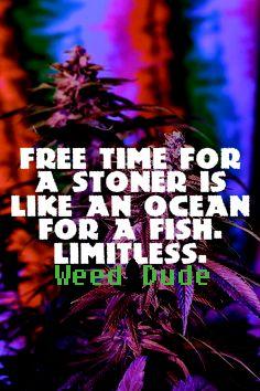 stoner fish