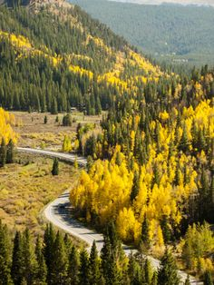 Marvel at colorful mountain views from Boreas Pass Road and nearby trails in Breckenridge, Colorado.