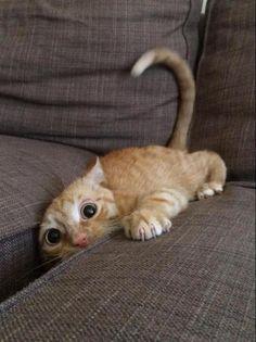 Ahhh! Estou escorregando!
