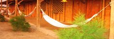 Guacamayo B es un tranquilo hostel ubicado a 100 metros de la playa y a sólo 5 minutos del centro.  Un edificio de bambú en estilo rústico con hamacas en el exterior, terraza, desayuno y un personal muy amable te está esperando.  ¡Máncora es mucha diversión, buenas olas para el surf, kitesurf, buceo, comida deliciosa, intensa vida nocturna y mucho mas!  ¡Ven y disfruta del sol durante todo el año!