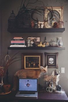 Corrine Alexandra http://blog.stuckwithpins.com/ Taxidermy, interior design, oddities