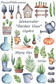 Watercolor garden clipart watercolor plants Watercolor