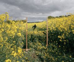 Open Fields by Guillaume Amat - see more on blog