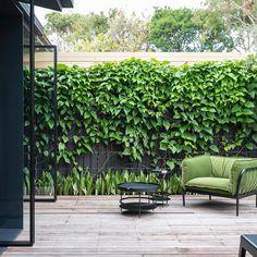 Outdoor Photos, Outdoor Spaces, Indoor Outdoor, Outdoor Living, Outdoor Ideas, Pivot Doors, Landscape Services, Wood Patio, Australian Homes