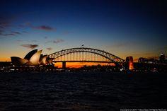オーストラリア シドニー ミセス・マッコリーズ・ポイントへ夕陽の絶景を見に行こう!