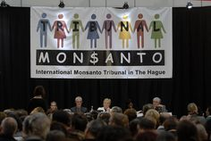 Monsanto was put on trial because of you. SumOfUs members donated so people from all over the world could travel to The Hague, Netherlands+give evidence to the International Tribunal. It was hugely successful! 750 people from 30+ nationalities participated + the related People's Assembly. Eminent judges heard from witnesses + experts + victims about Monsanto's abuses. Soon, the advice could really be putting Monsanto in the spotlight at the UN's International Court of Justice.