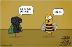 Source: Idees Vol Vrees Afrikaanse Quotes, Friday Humor, True Words, Funny Jokes, Hilarious, Comedy, Teaching, Sayings, Books
