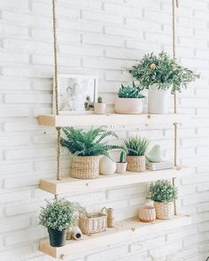 So was the Makemba pretty. Authentic paradise in a corner of the home Bedroom Plants Decor, House Plants Decor, Plant Decor, Diy Bedroom Decor, Diy Home Decor, Diy Hanging Shelves, Plant Shelves, Floating Shelves, Room With Plants