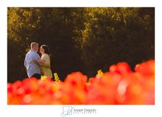 Longwood Gardens Engagement Sessions | Sharyn and Deon