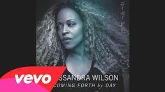 Cassandra Wilson - The Way You Look Tonight (Audio)