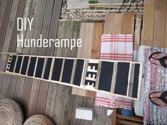 green addict und DIY hunderampe