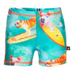3d8bf60c9ccd7 Molo zwembroek Norton Surfing Dog UVF 40+ Boys Swimwear, Girl Scout Crafts,  Urban