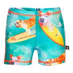 Molo zwembroek Norton Surfing Dog UVF 40+