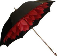 ** dahlia umbrella