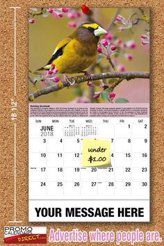 2021 Garden Song Birds Wall Calendars low as Advertise your business, organization or event logo and ad message the entire year! Out Of Office Message, Your Message, Promotional Calendars, Wall Calendars, Garden Birds, Phone Messages, Business Organization, Business Management, Holiday Cards