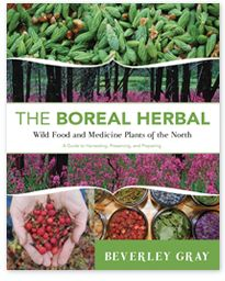 The Boreal Herbal: Wild Food and Medicine Plants of the North such a great book!