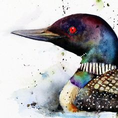 LOON Watercolor Bird Art Print, Loon Watercolor, Bird Painting, by Dean Crouser - LOON Watercolor Print by Dean Crouser by DeanCrouserArt on Etsy - Watercolor Bird, Watercolor Animals, Watercolor Paintings, Tattoo Watercolor, Watercolours, Watercolor Artists, Watercolor Portraits, Watercolor Landscape, Loon Tattoo