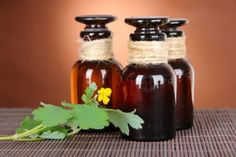 Настойки для лечения простатита: самые эффективные рецепты - http://prostatit.guru/prostatit/narodnye-sredstva/nastojki-dlya-lecheniya-prostatita/